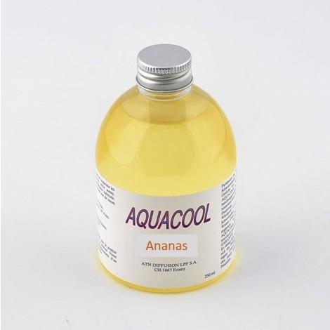 Parfum Aquacool Ananas