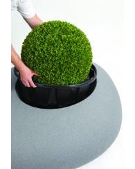 Bac à plante Storus